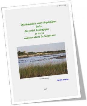 PDF - 7.6Mo