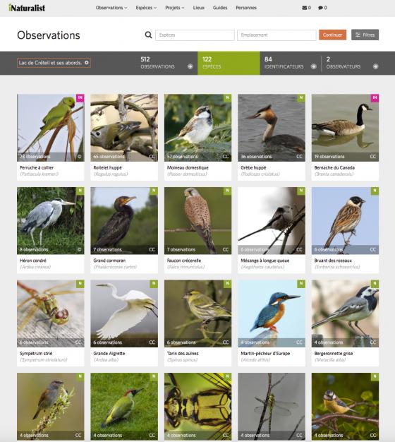 Espèces observées au lac de Créteil et ses abords sur iNaturalist.