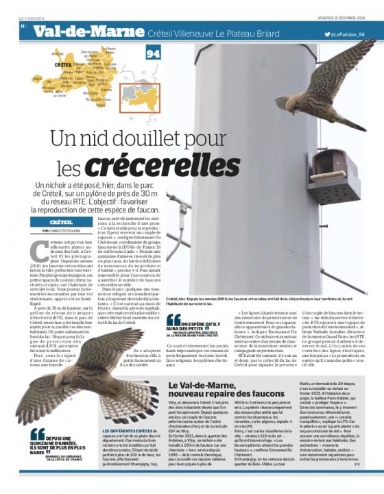 Le Parisien du 21 décembre 2018 - Un nid douillet pour les crécerelles