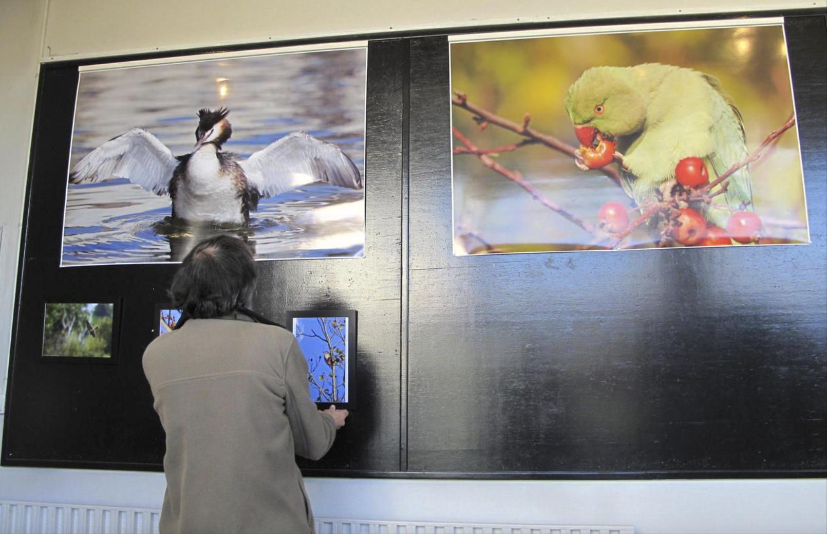 Accrochage de l'exposition du Collectif du lac de Créteil